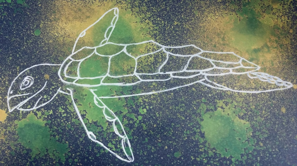 Hand drawn white turtle on a splotchy blue, green, and yellow background. Logo.
