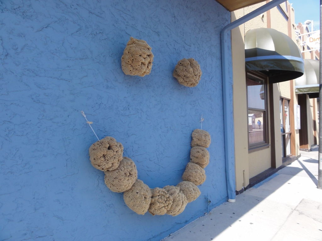 Smiley face made out of sea sponges