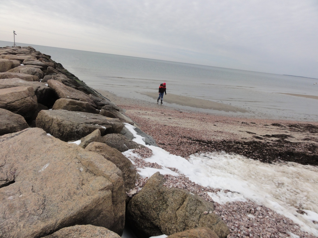 Woman looking for shells on a beach with snow on it
