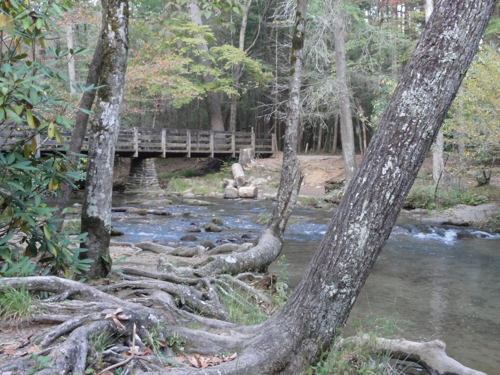 Creek with a bridge over it and trees around it.